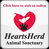 HeartsHerd.com