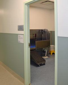 grooming room-2